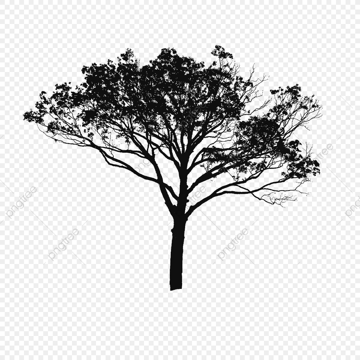 Tree Vector Black And White Tree Vector Clipart Tree Clipart Tree Png Vector Png Transparent Clipart Image And Psd File For Free Download Black And White Tree Black Tree Tree Photoshop