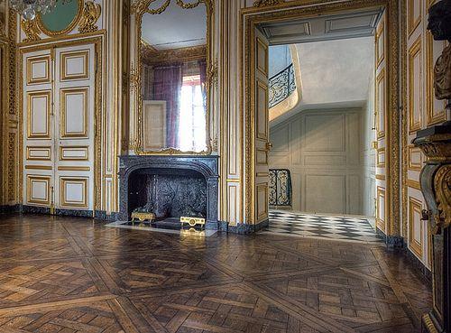 Antichambre des chiens | Chateau versailles, Estate interior, French  interior