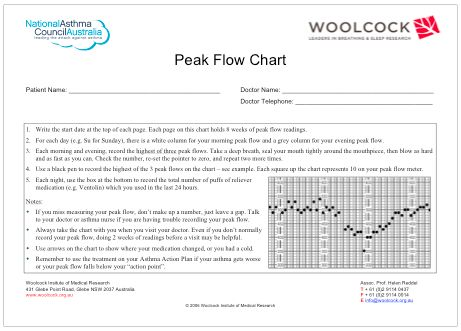 Printable Peak Flow Chart  Using The My Peak Flow Diary Or The My