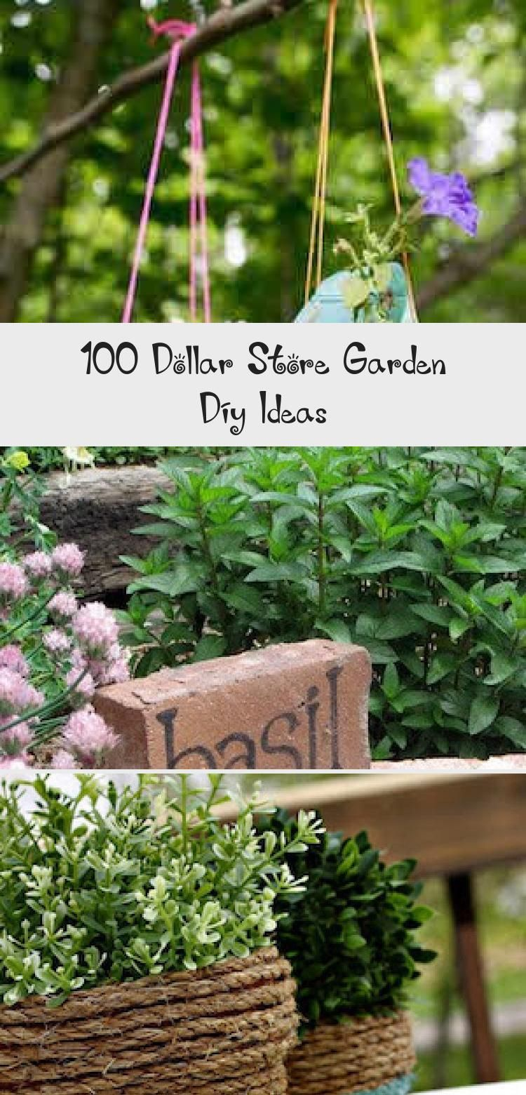 Photo of Give your garden a makeover for less with these dollar store garden DIY Ideas. F…