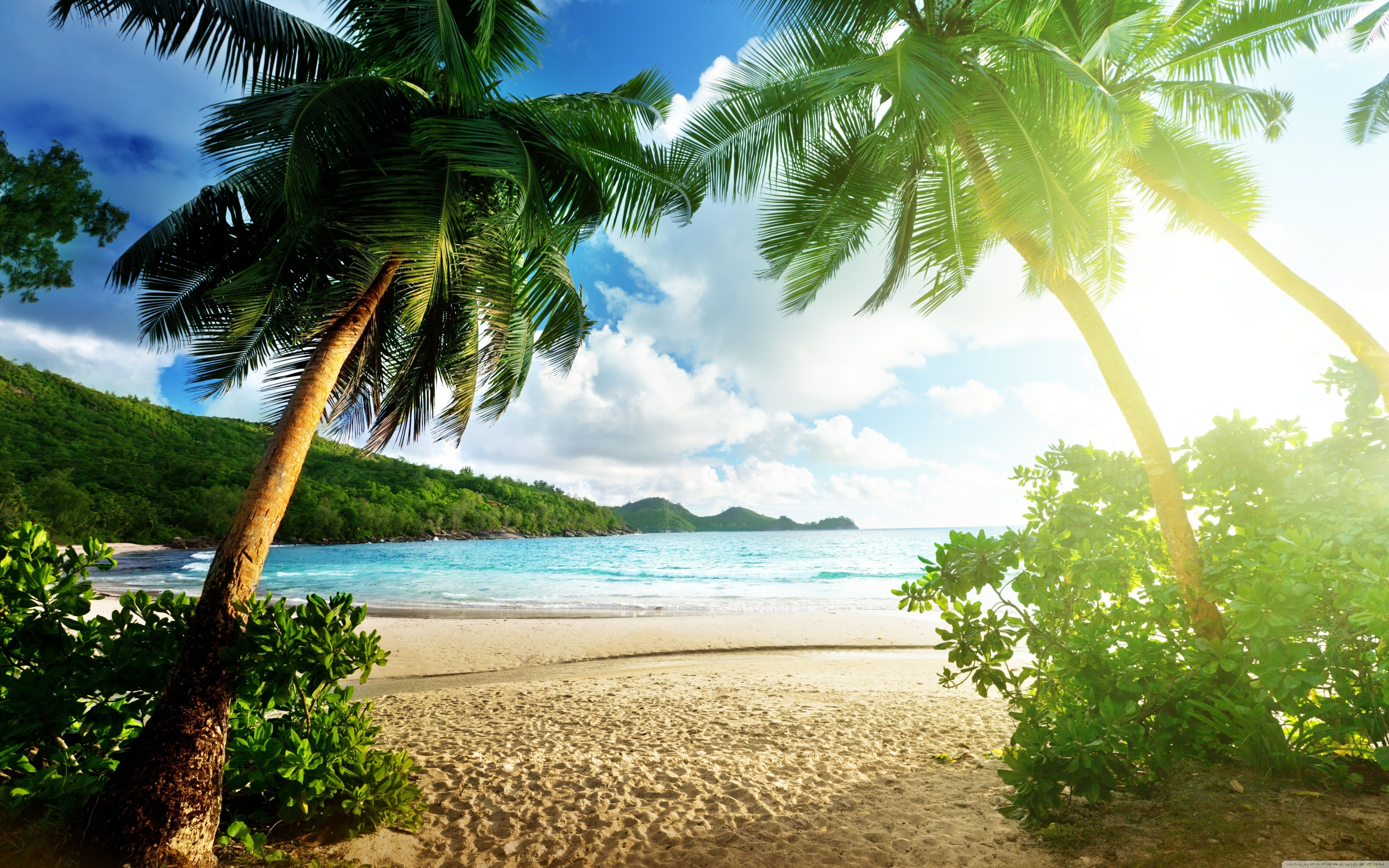 Laptop X Island Wallpapers Hd Desktop Backgrounds X With Images