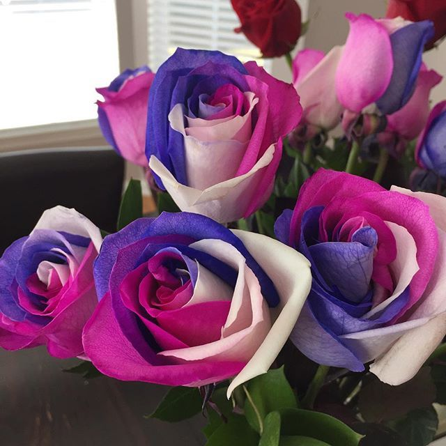 Stunning Tri Colored Purple Pink And White Roses Image Via Tirzashelton On Instagram Theultimaterose Com Theultimater Rose Delivery Rose Colorful Roses