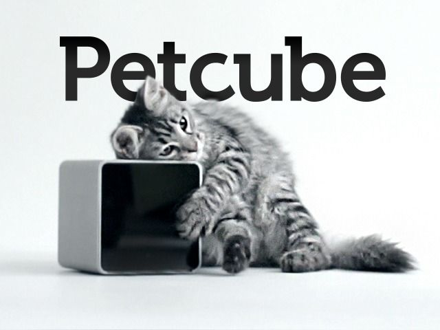 Petcube — Even the most attentive pet owners can't be around to look after their animals all day, every day — but with Petcube ($150) you can watch, speak to, and even play with your dog or cat from your smartphone