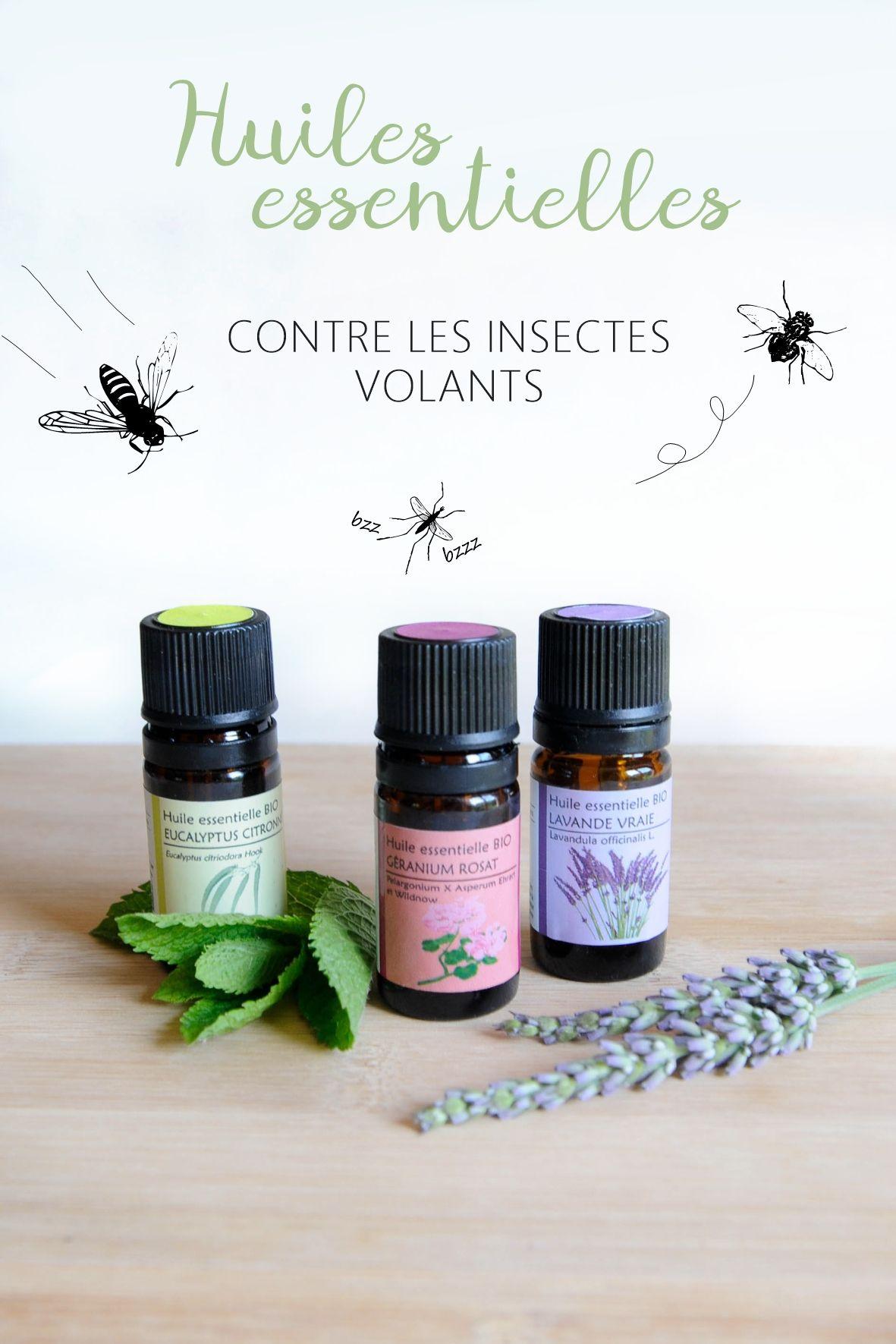 Remede De Grand Mere Contre Les Moucherons Dans La Maison mes huiles essentielles contre les insectes | huiles