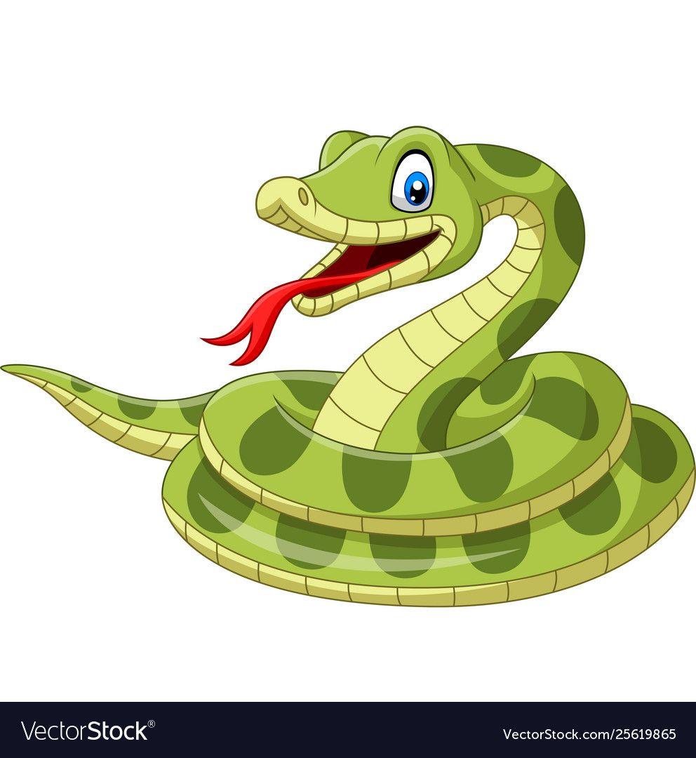 Cartoon Green Snake On White Background Royalty Free Vector ส ตว การ ต น น าร ก