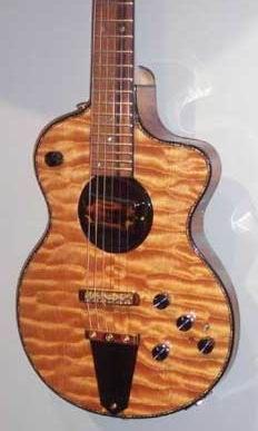 Turner Guitars Lindsey Buckingham Model Custom Acoustic Guitars Guitar Lindsey Buckingham Guitar
