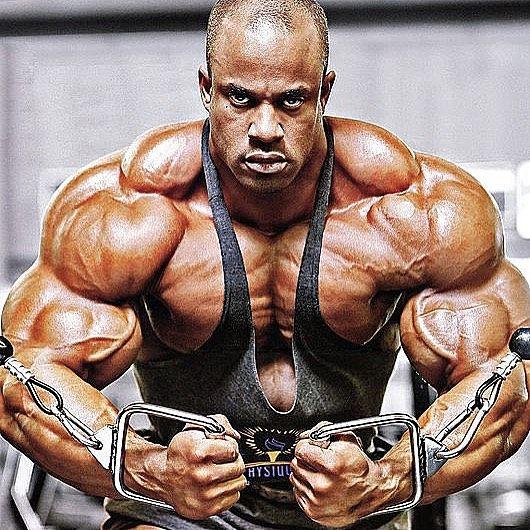 Kip Fit On Instagram Ifbbvictormartinez Kip Fit Shredz Fitness Zumba Kipfit Abs Workout Gy Bodybuilding Motivation Bodybuilding Bodybuilding Workouts