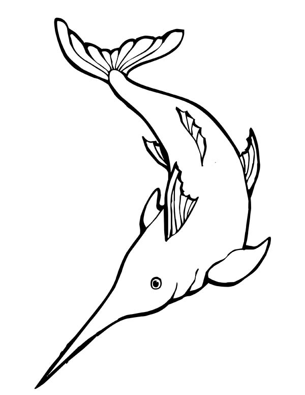 Awesome Swordfish Coloring Page Color Luna Coloring Pages Color Swordfish