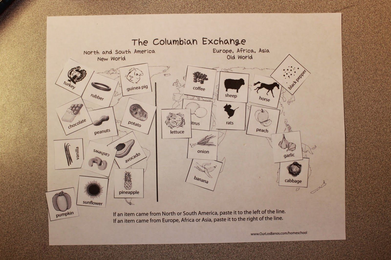 The Columbian Exchange Free Printable Cut And Paste