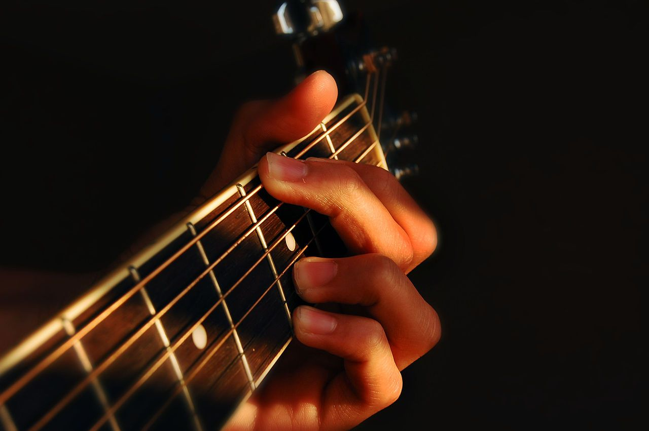 Levels For Guitar Review Httpimpartialreportreviews
