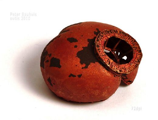 Peter Bauhuis contemporary jewellery piece.