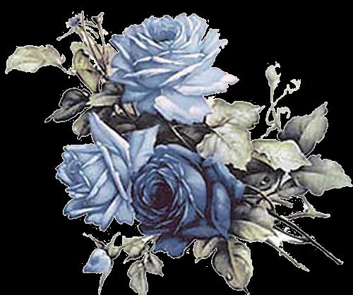 Blue rosesso pretty Rysunki, Róże, Akwarelowe kwiaty
