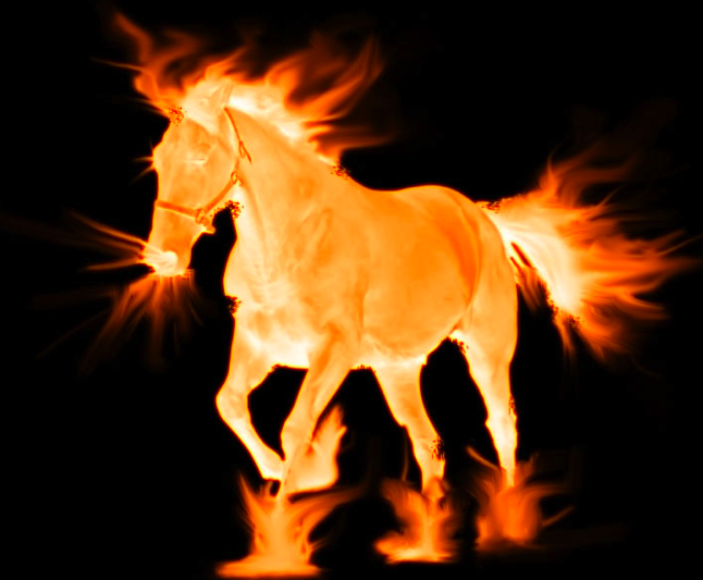 hinoeuma the fire horse of the chinese zodiac is a powerful and beautiful image every 60 years there is born a new herd of fire horse c - Chinese New Year 1966