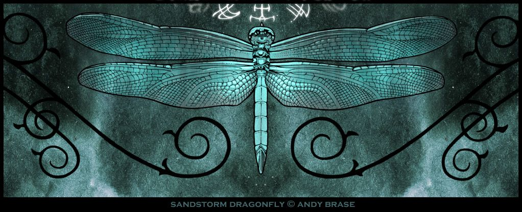 Sandstorm Dragonfly Night V2 Fb Cover Photos Dragonfly Facebook Cover Images
