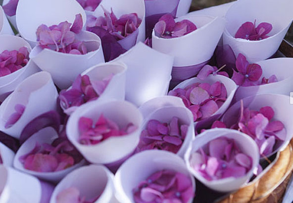 Italia Celebrations | @grace_ormonde @wedding_style | Flower petals to throw at the bride and groom as they leave!