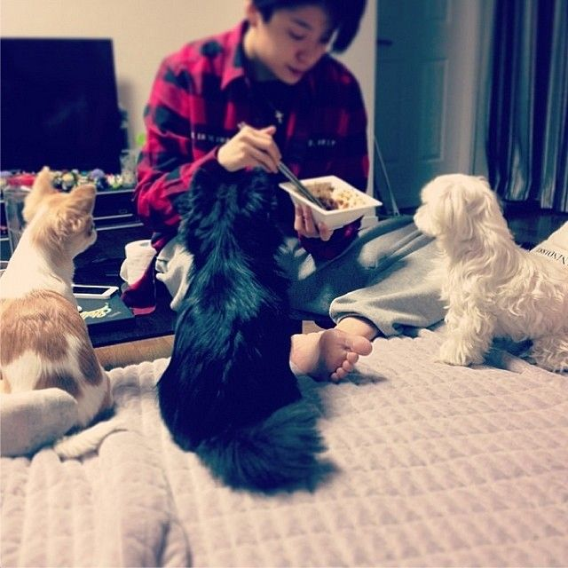 Image Result For Amber Fx Dog Jack Jack And Princess Amber Liu Amber Amber Lui