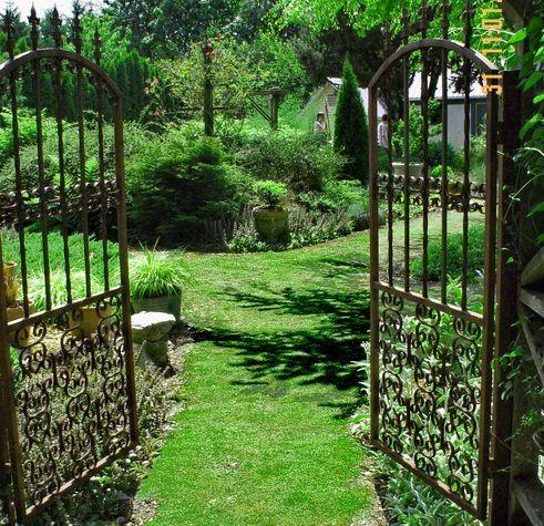 Stepables Com Plants That Tolerate Foot Traffic Backyard Grass Alternative No Grass Backyard Grass Alternative