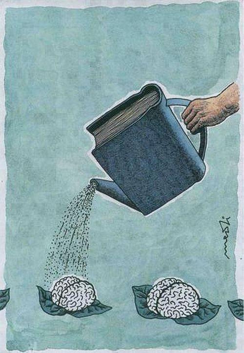 Resultado de imagen de feed your brain books