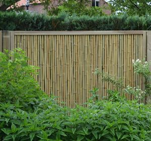 Picture Of Frame In Hout Stadstuin Schutting Tuin