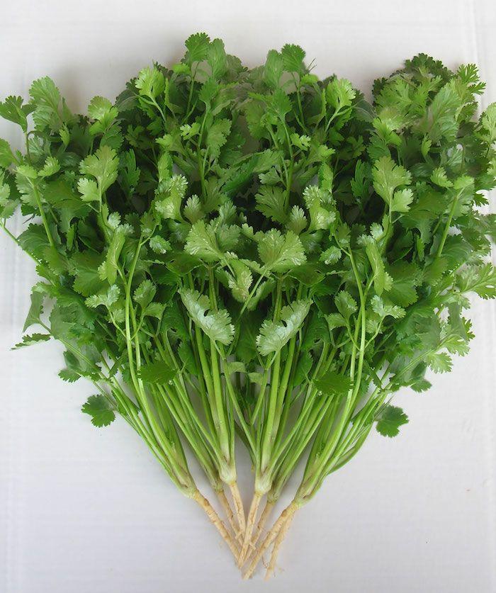 Faire un jardin d'herbes aromatiques et en profiter toute
