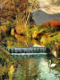 Animated nature wallpapers for mobile phones images 41 - Nature wallpaper 240x320 ...