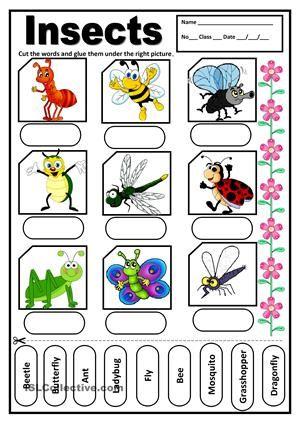 A Very Simple Worksheet Esl Worksheets Pinterest