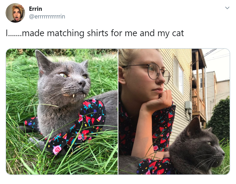 Wholesome Animal Tweets To Pass Time Till The Weekend