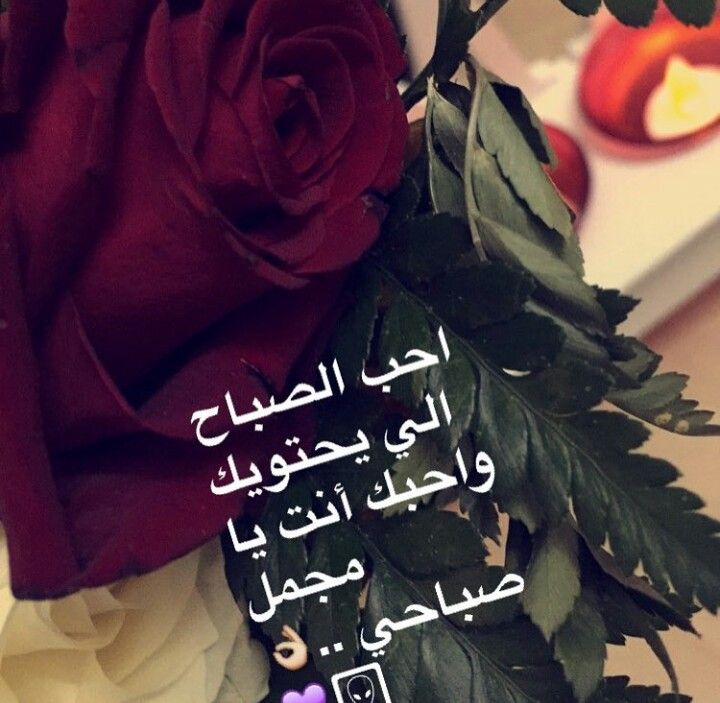 Pin By روح الورد On سناباتي Love Words Words Morning Quotes