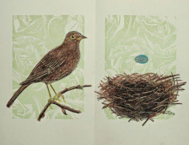 Amsel. Nest.  by Ariane Reichardt, 2014