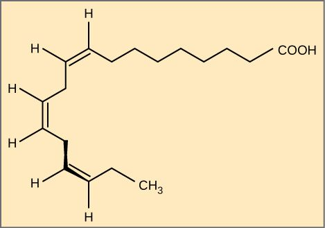 Image Result For Omega 3 Fatty Acid Structure Tattoo Pinterest