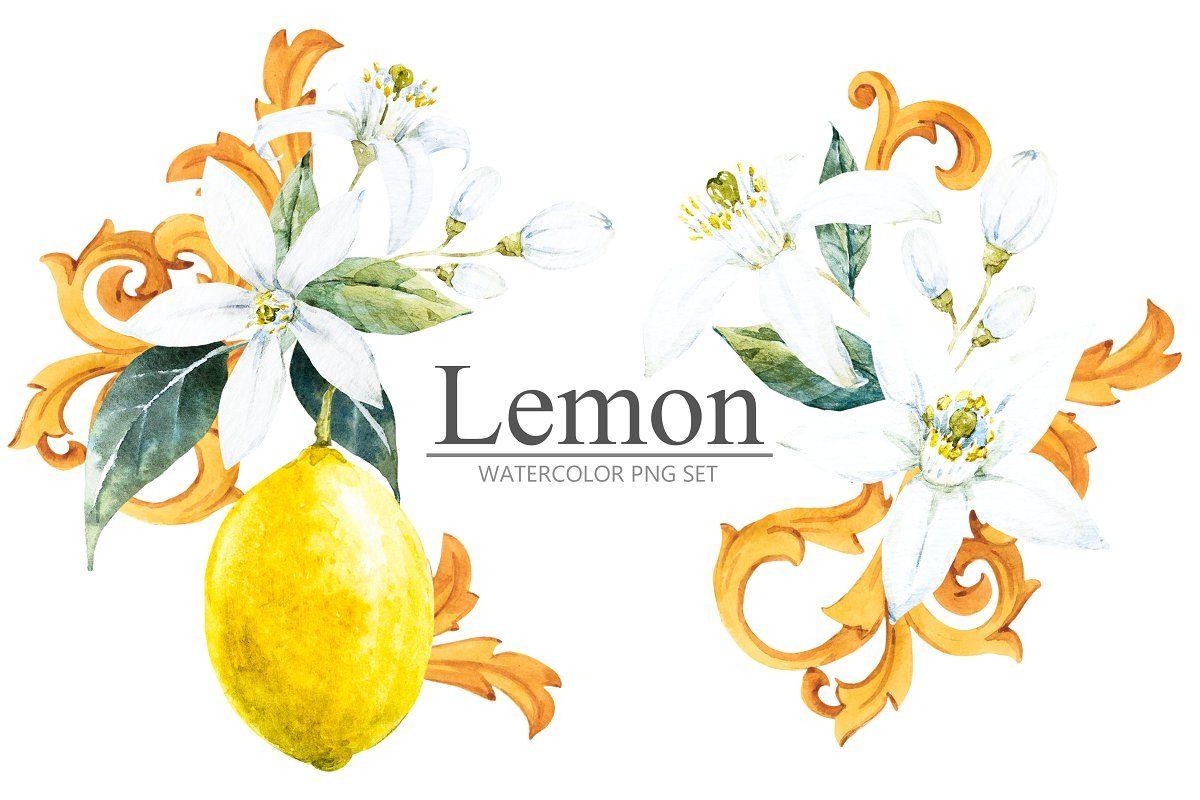 Lemon Watercolor PNG Set Lemon watercolor, Graphic