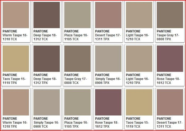Warm Taupe Color Chart What Color Is Taupe Pantone Colour Palettes Taupe Colour