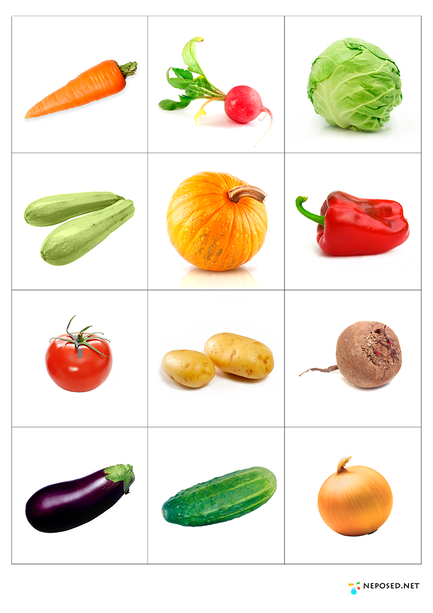This is a photo of Lively Printable Fruit and Vegetables