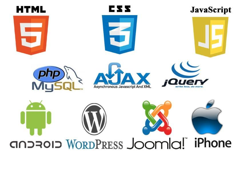 Looking For Php Website Developer You Are At Right Gig I Have