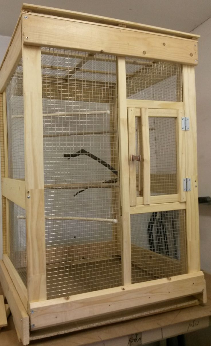 indoor bird aviary plans  Pet House  Pinterest