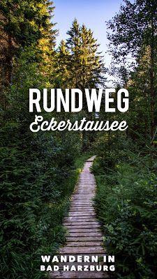 Photo of Circular trail Eckerstausee | Hike Bad Harzburg
