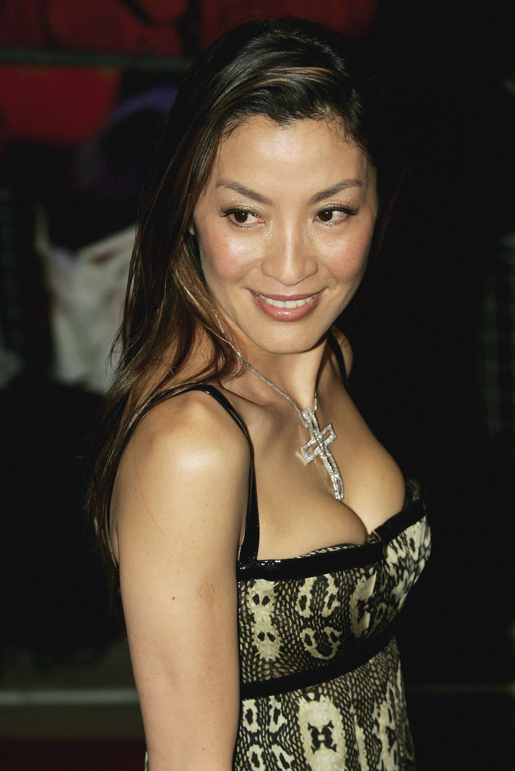'Master Z: Ip Man Legacy' Places Michelle Yeoh Back In The ...