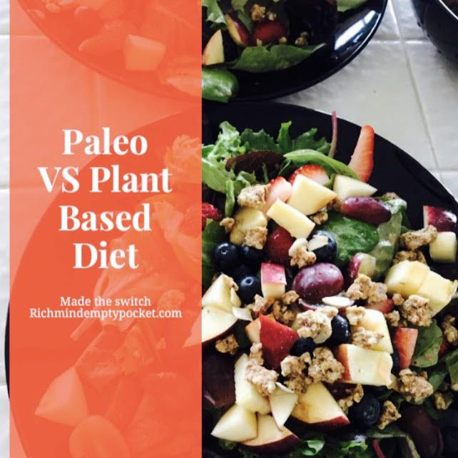 plant based diet essay Essay on benefits of a plant-based diet wine is the elixir of life there are dozens of diet plans and they promise a leaner and healthier body.