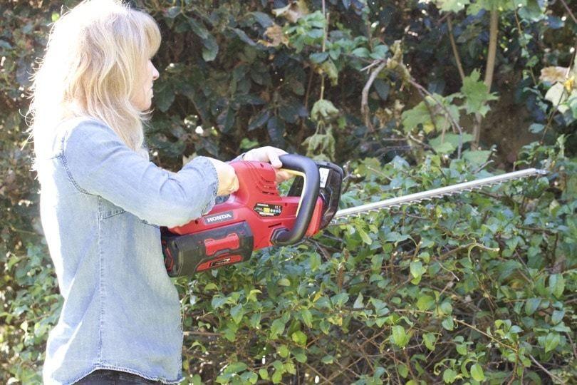 Des outils de jardin sans fil pour jardiner sans contrainte ...