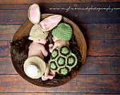 Crochet The Tortoise and the Hare Set Bunny and Turtle Set Combo