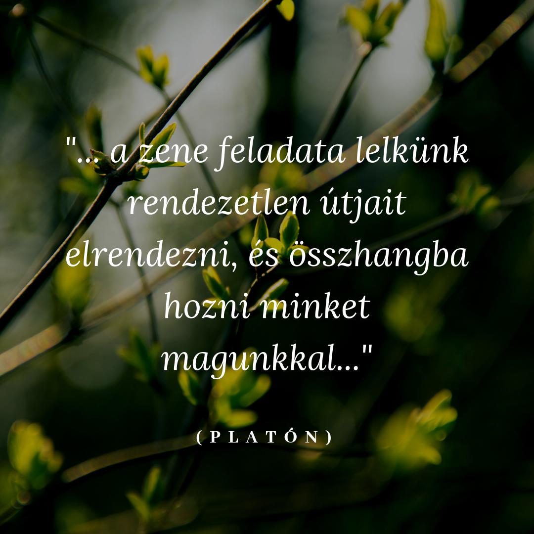 zenéről szóló idézetek Platón és a zene in 2020 | Picture quotes, Inspirational quotes