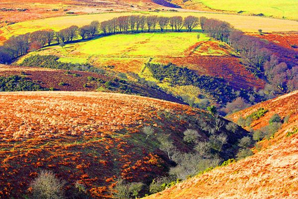 Great Places To Go For A Walk In Somerset UK
