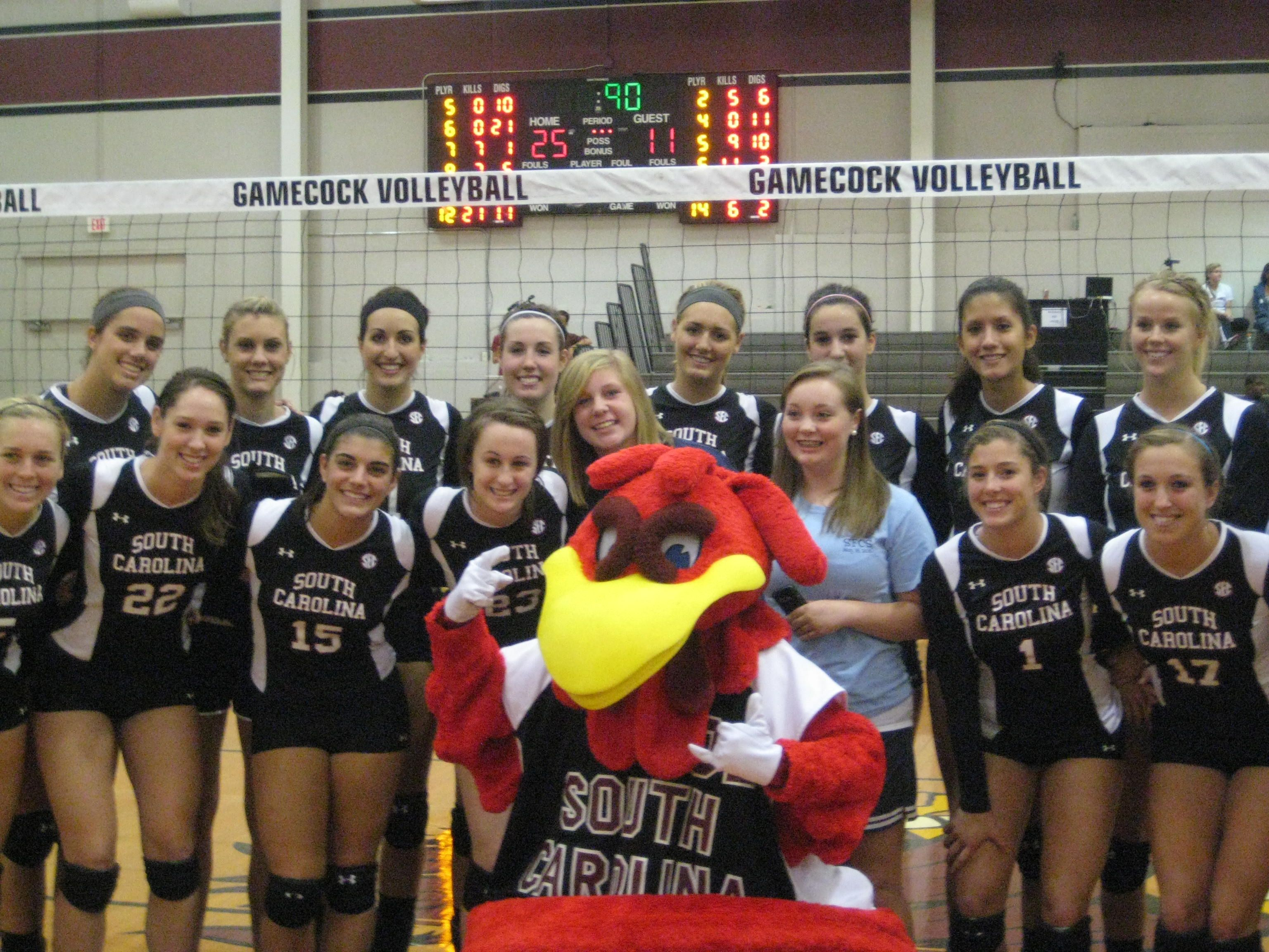 Gamecock Volleyball Volleyball Gamecocks Sports