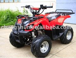 110cc ATV for adults website: www.harryscooter.com email: sales2@harryscooter.com Skype: Sara-changshun