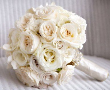17 Images About Wedding Flowers On Pinterest Green Weddings White Rose Bouquet White Rose Wedding Bouquet White Roses Wedding