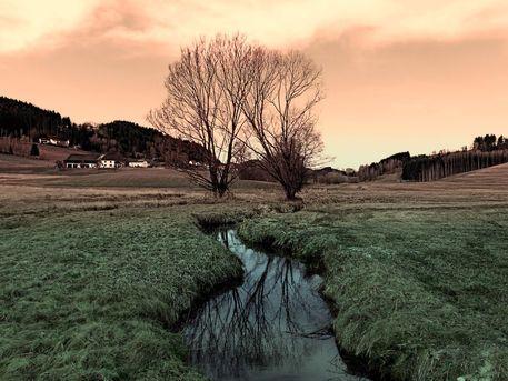 'Bach, Bäume, Spiegelungen 2 | Landschaftsfotografie' by Patrick Jobst on artflakes.com as poster or art print $16.63