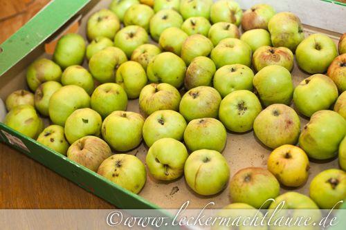 Apfelstrudel-Konfitüre