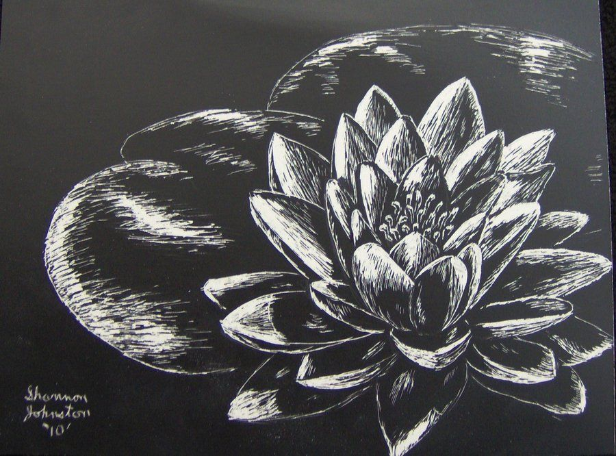 Black And White Scratch Art Flowers Night Lily By Mystiquedeep