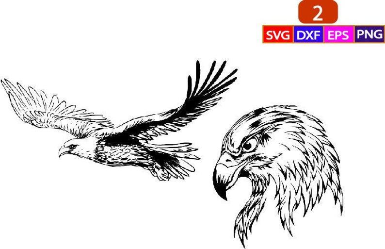 Soaring Eagle Svg Eagle face eagle face svg eagle face