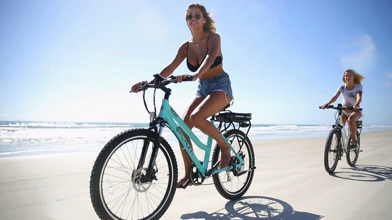Flaunt electric bicycles bicycle eco friendly cleaning